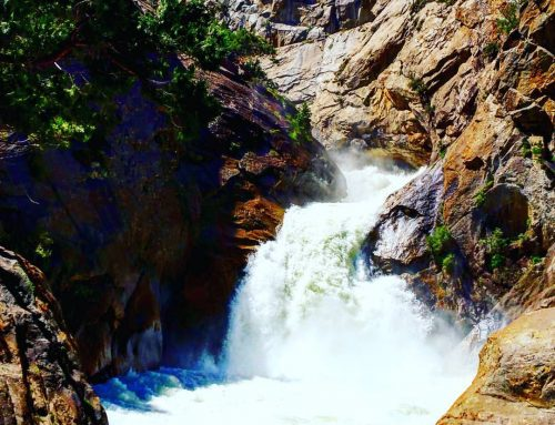 American Wilderness – Sequoia & Kings Canyon National Park